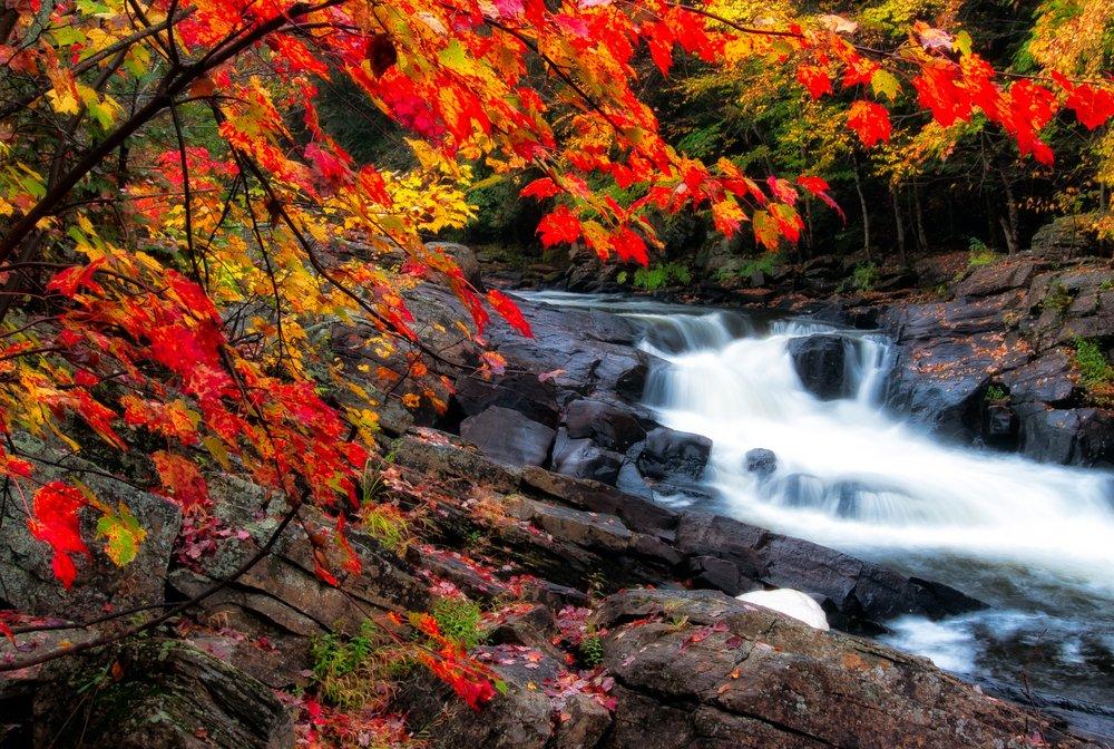 autumn-cascade-creek-1564655.jpg