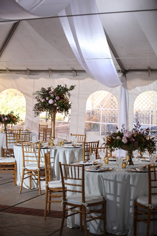 Image source:  www.craddockterryhotel.com/Photos-Videos