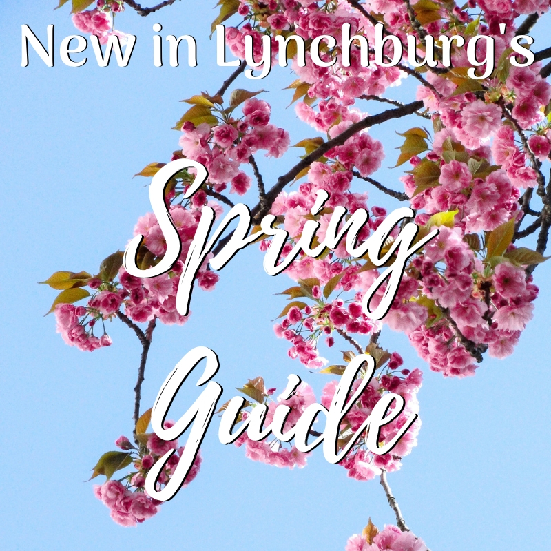 Spring Guide Square.jpg