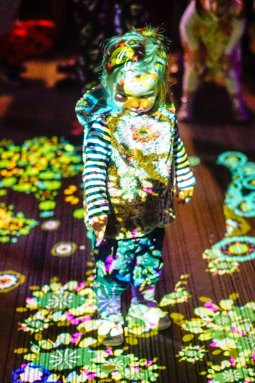 Dancing Lights West Projections 2017 - 5-4.jpg