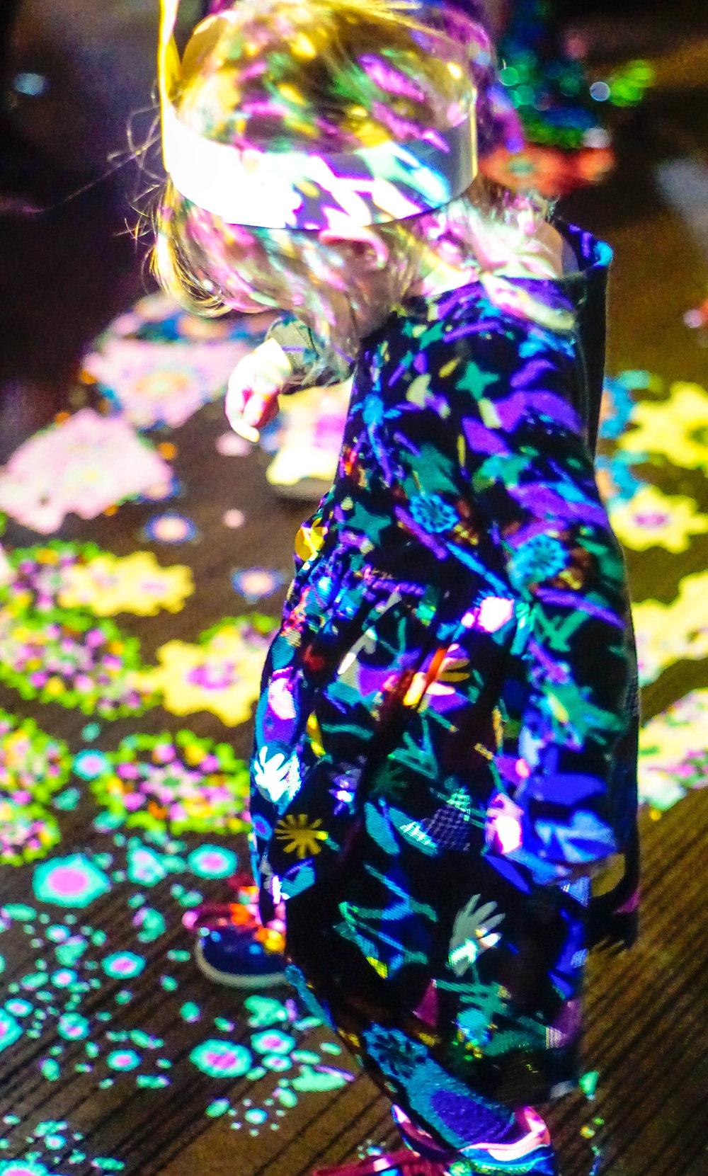 Dancing Lights West Projections 2017 - 6-5.jpg