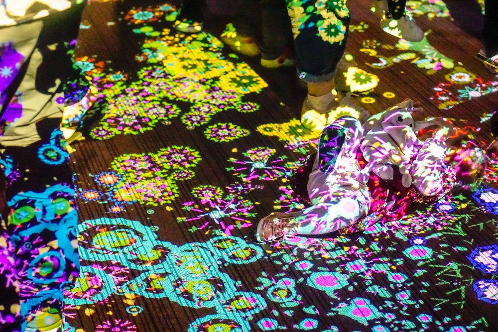Dancing Lights West Projections 2017 - 10-9.jpg