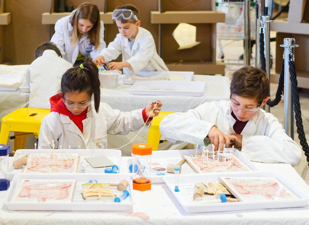 SciencePlay Kids - Little Life Lab Woodgrove Melton - 9-21.jpg