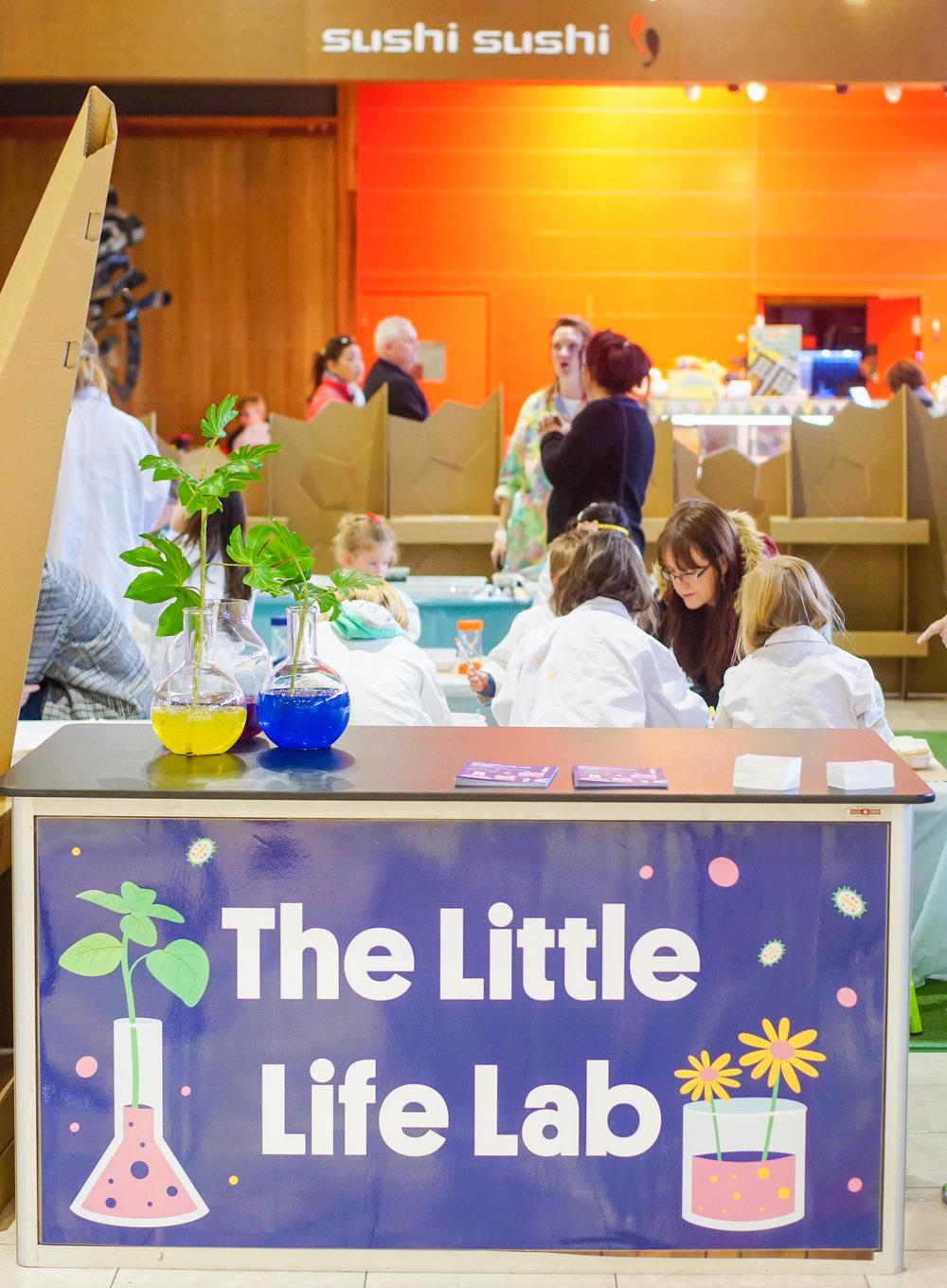 SciencePlay Kids - Little Life Lab Woodgrove Melton - 26-23.jpg