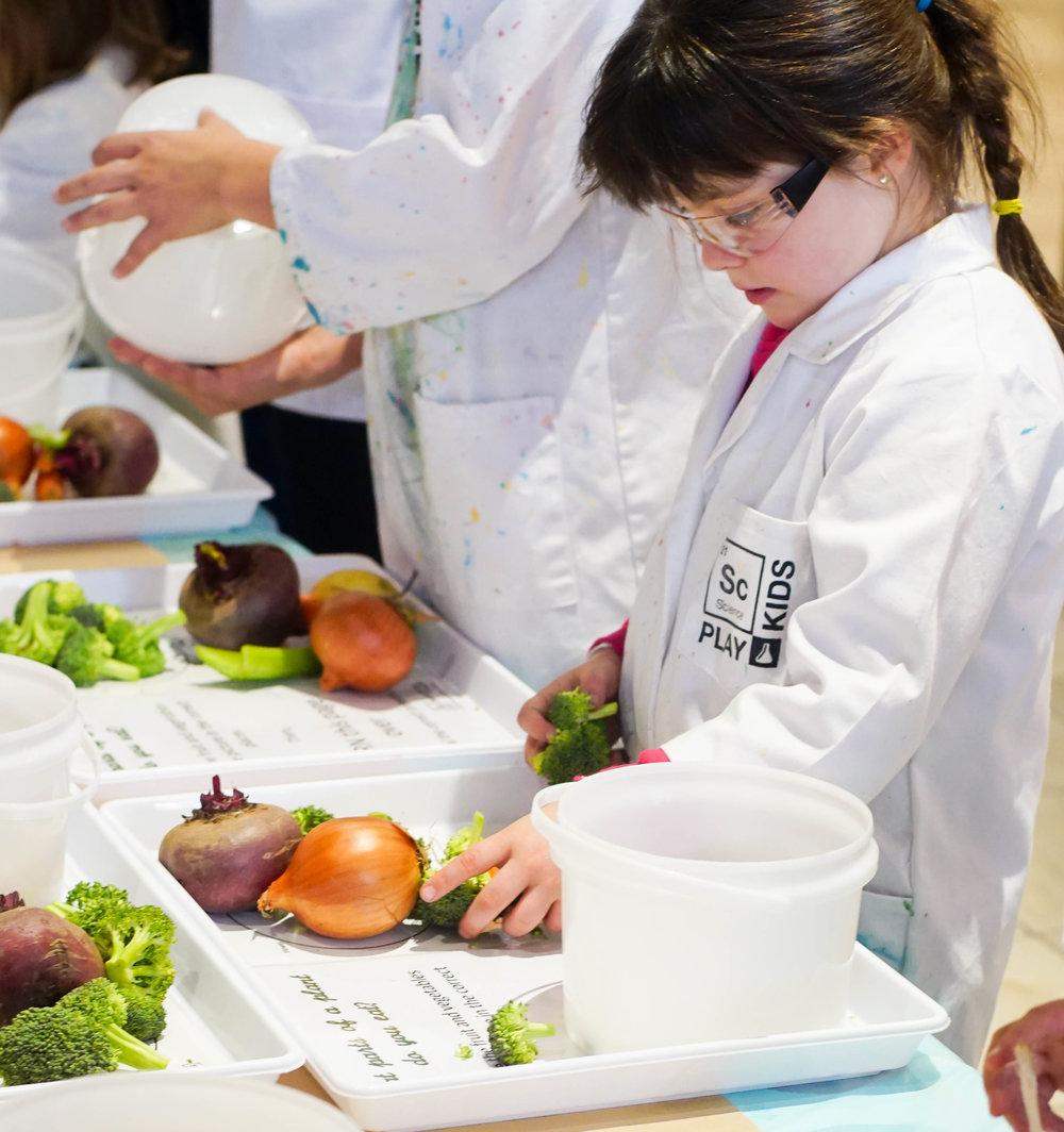 SciencePlay Kids - Little Life Lab Woodgrove Melton - 6 (3)-5.jpg