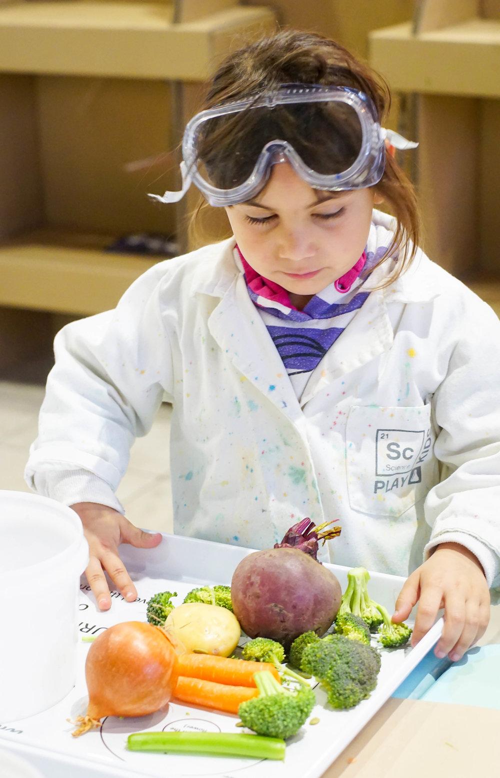 SciencePlay Kids - Little Life Lab Woodgrove Melton - 8 (3)-7.jpg