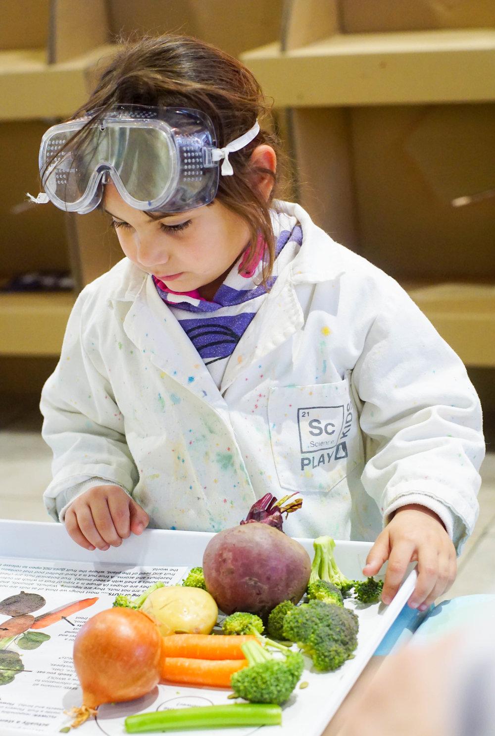 SciencePlay Kids - Little Life Lab Woodgrove Melton - 9 (3)-8.jpg