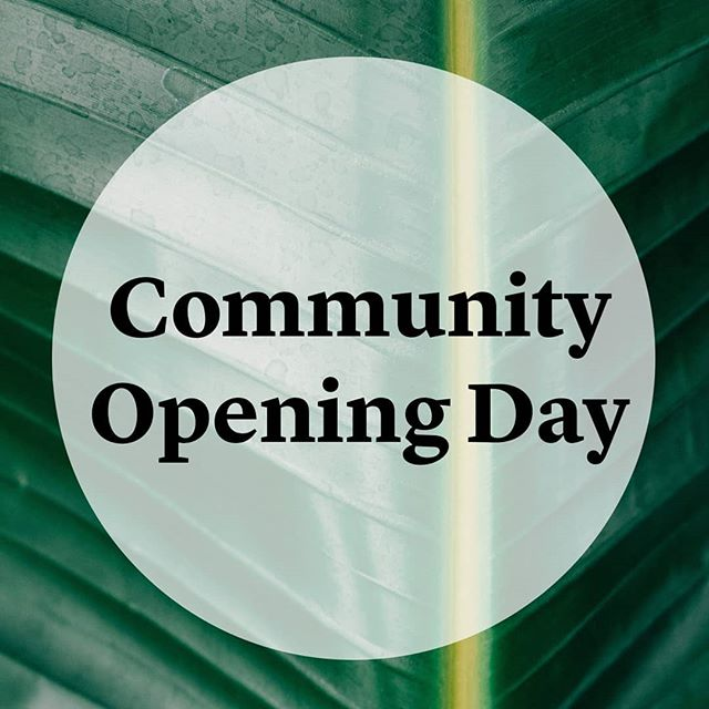 🌟🌟The opening of our new space has finally arrived!  Join us on the mat, Saturday 30 June:  8.30 - 9.30am Yin with Tanya 10.30 - 11.30am Sample Class 4 - 5pm Yoga Nidra with Jo  Come meet our team, see our gorgeous space and join in on yoga, bliss balls + herbal tea. PLUS sign up to one of our Continuous Yoga packages on the day and you will go in the draw to win a fabulous yoga pack.  Classes are a gold coin donation.  You will find us📍14 Clyde Road, Browns Bay  www.the-nest.co.nz