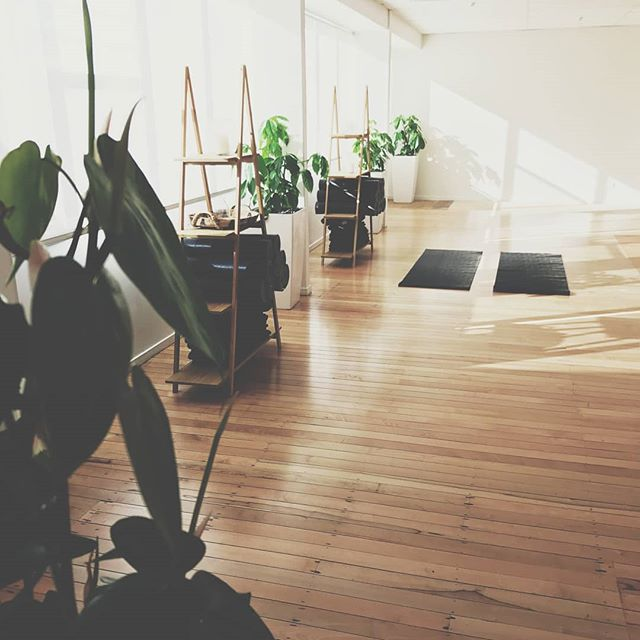 TWO LOCATIONS and over 30 yoga classes a week!  Allow our expert teachers to guide your practice on both sides of the bridge.  Our light filled studios above Huckleberry New Lynn and Huckleberry Browns Bay are a safe space for people to start a new yoga practice, develop their own or simply take a breather from the everyday. We have a wide range of styles to suit all types but our focus is on safety and inclusion in every class.  Continuous Yoga Packages of unlimited yoga are now available. More info about timetable and yoga packages can be found on our website.  HOLISTIC WELLNESS   YOGA   NATUROPATHY   MINDFULNESS   KINDNESS  www.the-nest.co.nz