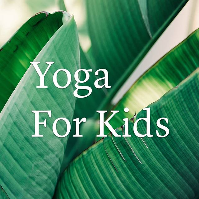 Yoga for Kids TERM 3  Our kids yoga course is starting on July 24th at our New Lynn studio.  We have a few spots left and would love for your little one to join us. Classes will run on Tuesday afternoons 3.30 - 4.30pm from 24 July -11 Sept 2018.  This fun and playful introduction to yoga has been designed for children 6-10 years. $120 for the the 8 week course.  Head over to our website for bookings www.the-nest.co.nz/events  NOTE: TERM 4 AT BOTH BROWNS BAY AND NEW LYNN IS NOW OPEN FOR BOOKINGS. BE SURE TO BOOK YOUR LITTLE ONE A MAT.