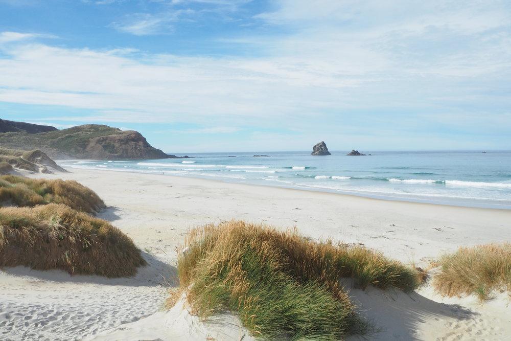 Sandfly Bay, Dunedin, New Zealand