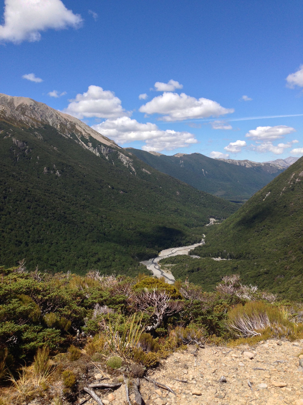 Halfway up the mountainside - Hawdon Valley, near Arthur's Pass.