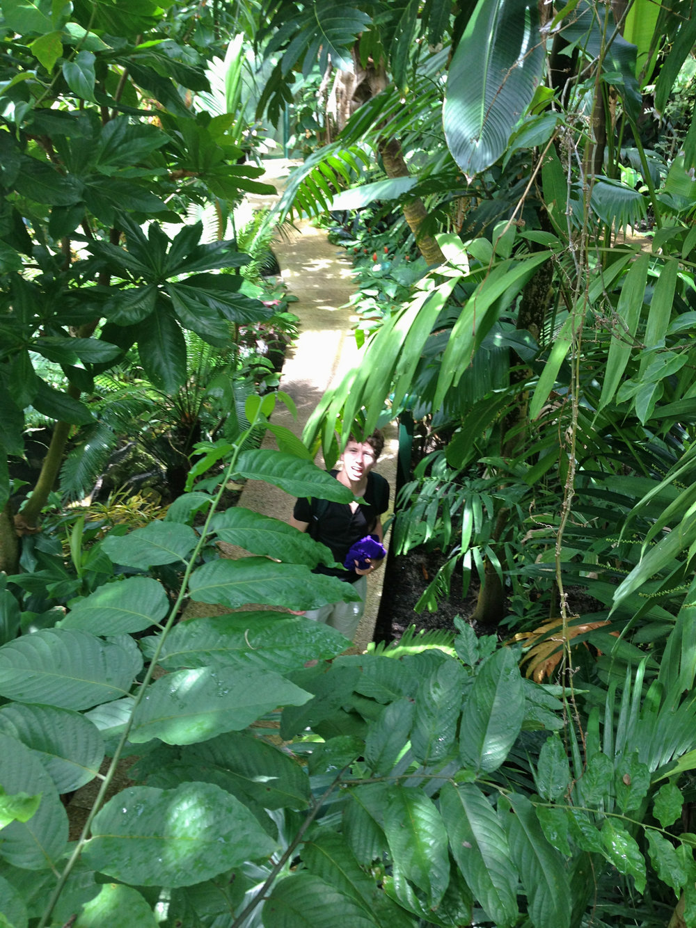 Feelin' lush in the rainforest pyramid.