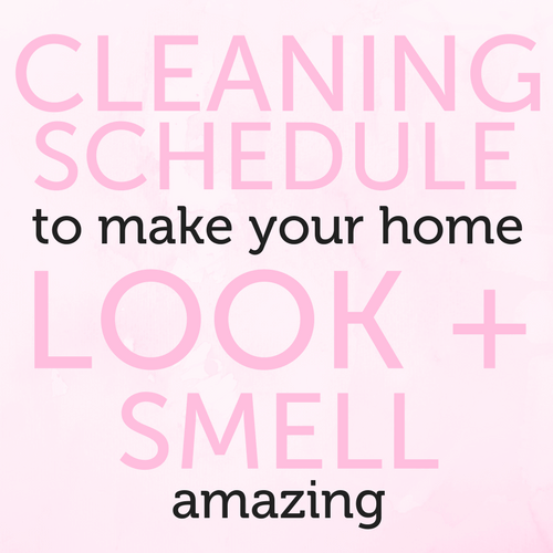 HomeCleaningSchedule (1).png