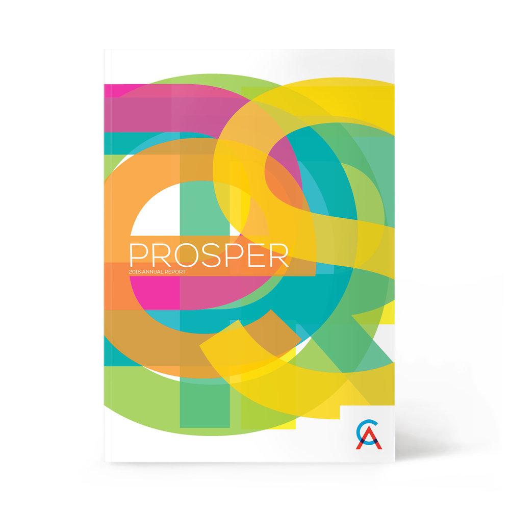 Business Studio CA Annual Report