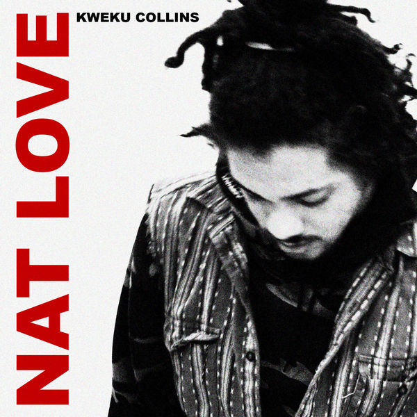 "Nat Love      ""He tends to write in circles of wordplay or elongated strands of thought that seek meaning through journal-like streams of discovery.""           - Pitchfork"