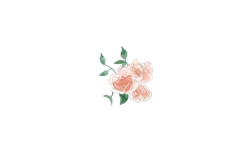 rose2_web.jpg