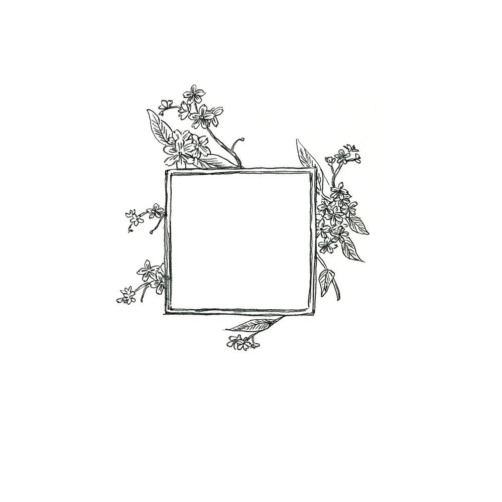 flower-frame.jpg