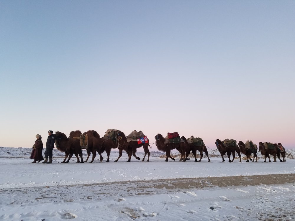 Steppes to the West camel caravan.