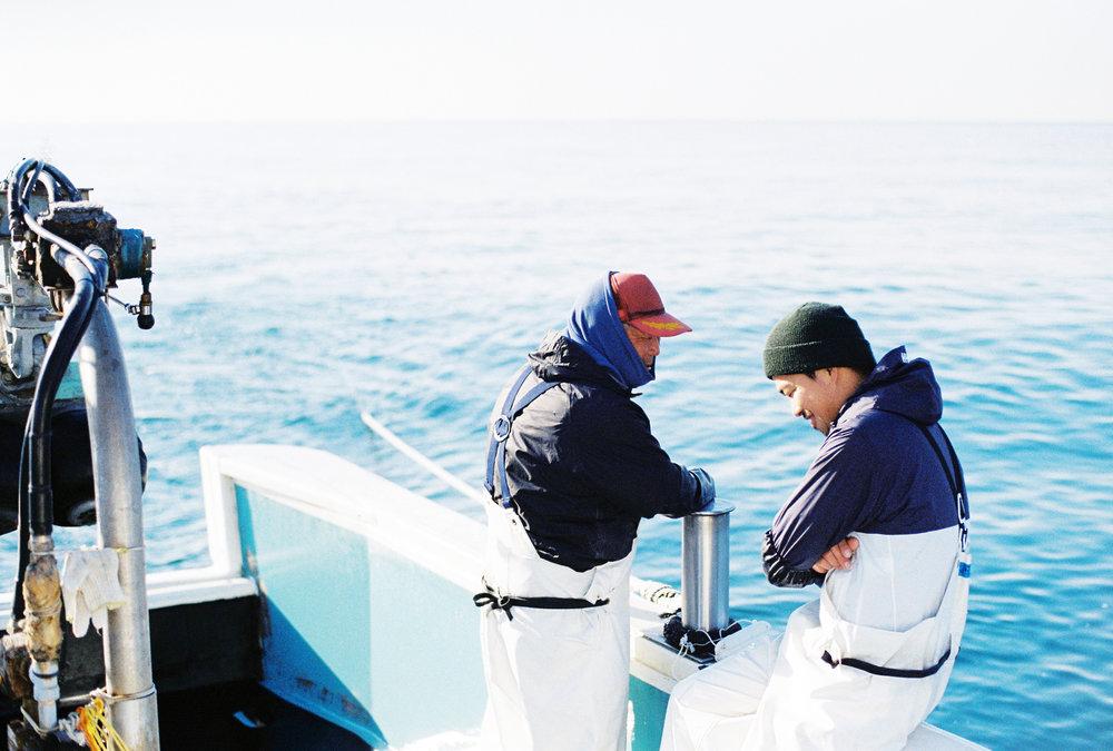 江ノ島漁6.JPG