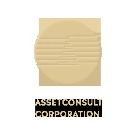asset-logo.png