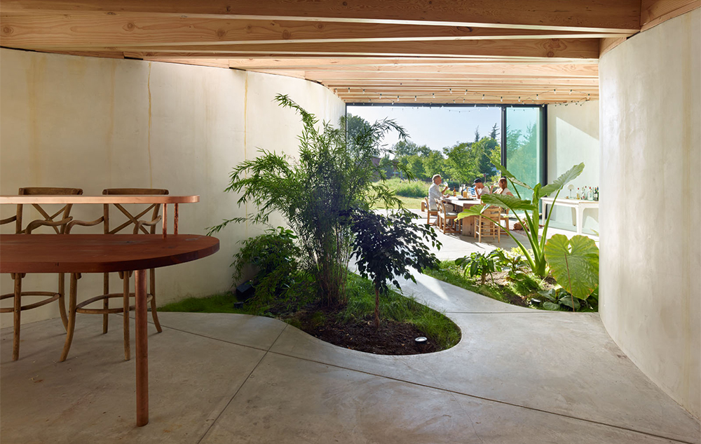 view of the interior of the living room with tropical plants coming off the floor