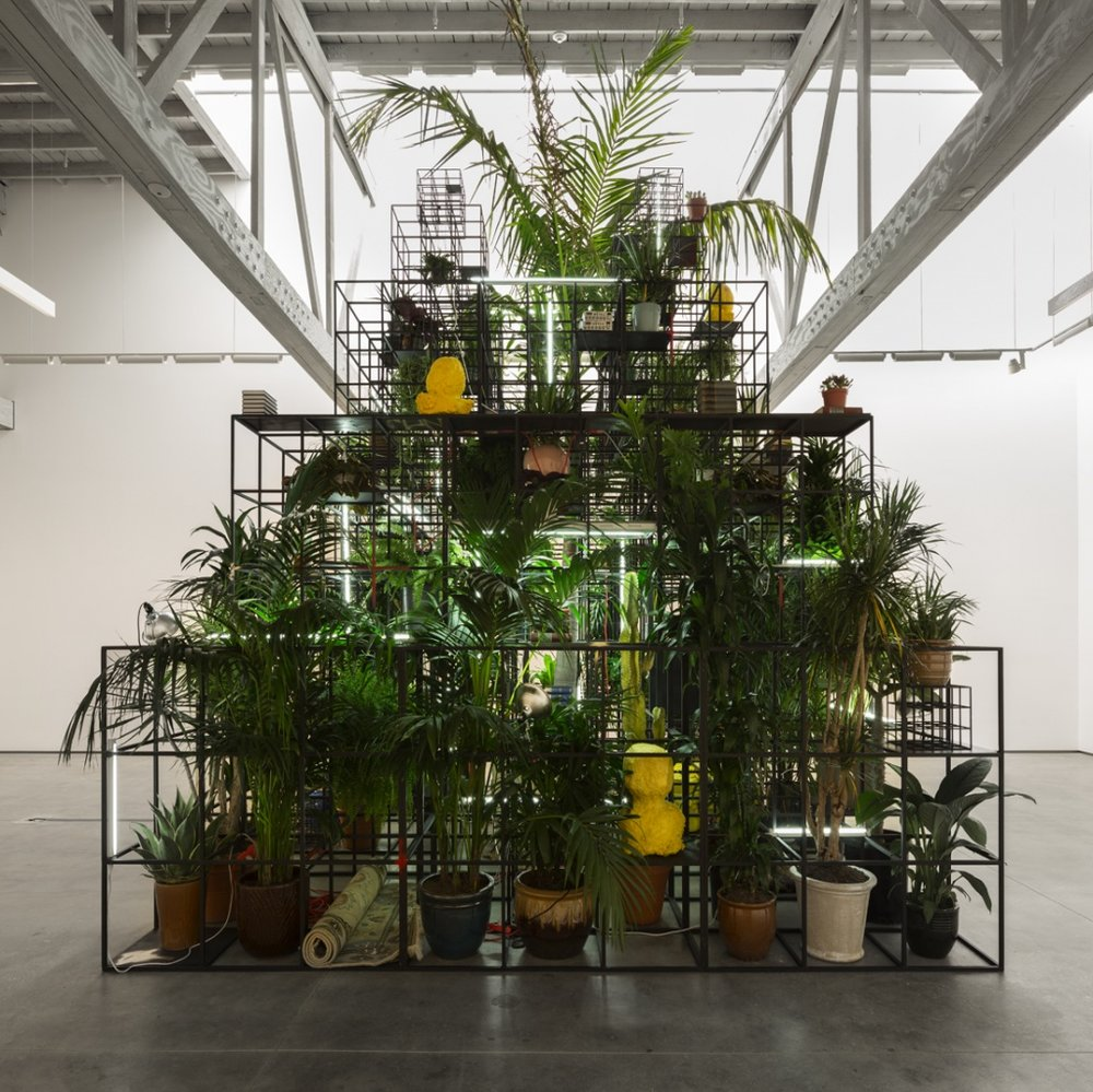 mixed media art by Rashid Johnson combining plants, pots and small sculptures