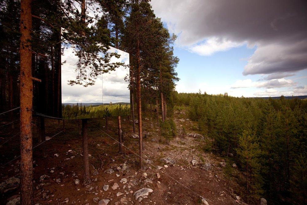 cube mirro tree house overlooking Swedish woods