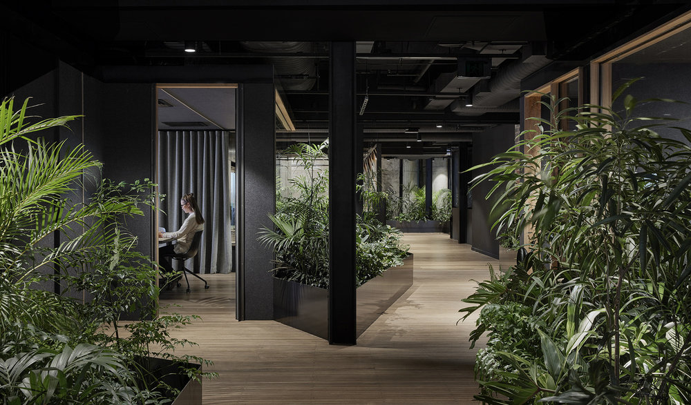 Entrance of Slack office in Melbourne by Breathe Architecture Slack