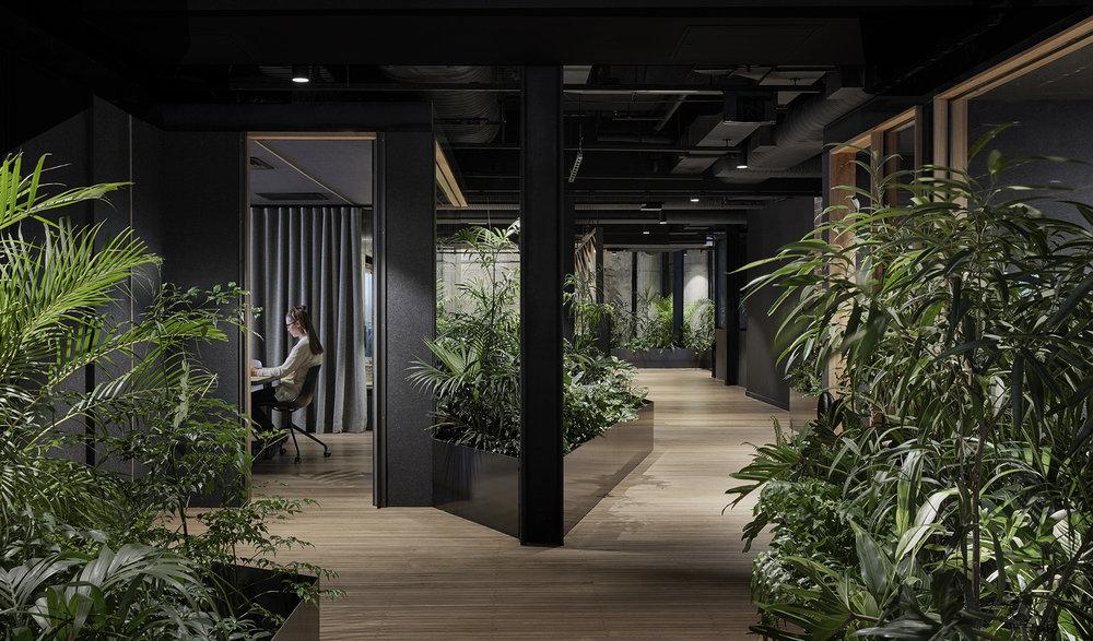 Entrance of Slack office in Melbourne by Breathe Architecture Slack