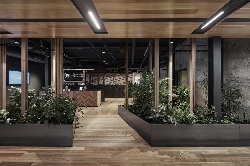 Slack office features wooden floors, dark walls and a lot of plants