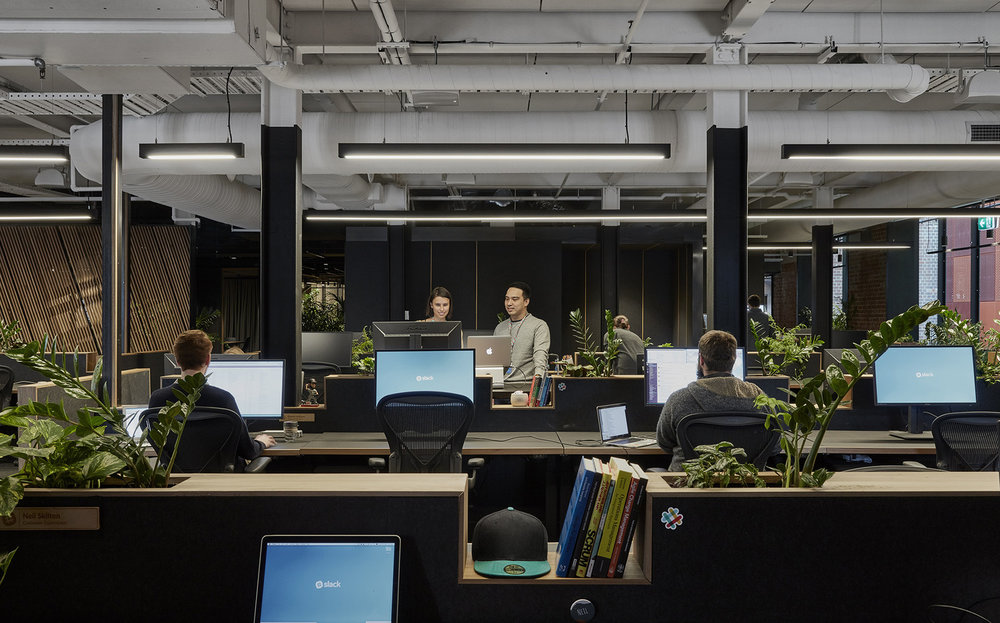 Open space office for Slack in Melbourne with a modern touch and greenery