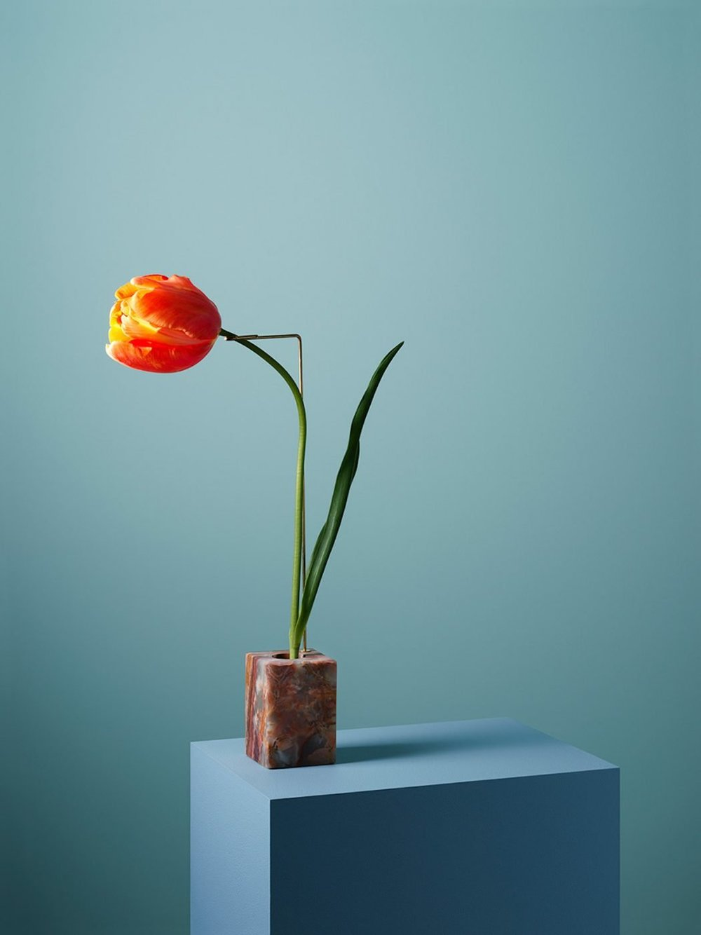 Carl Kleiner presents the posture vases collection