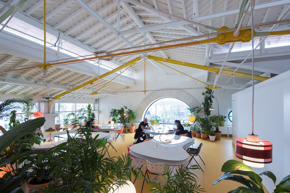 Plant filled co working space in the center of Lisbon