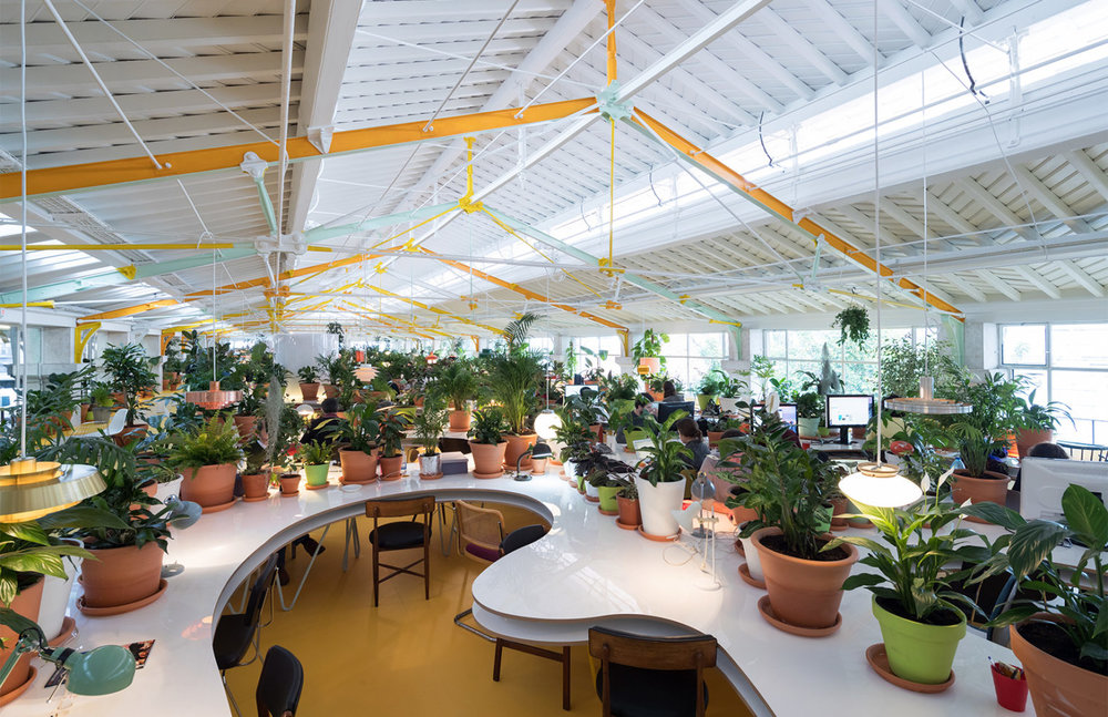 A desk at Second Home, surrounded by plants