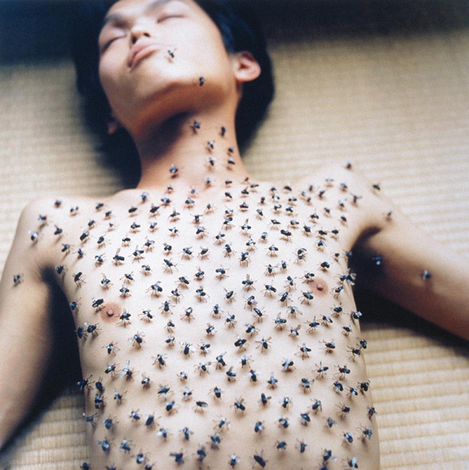 Pic of Rinko Kawauchi : man laying down covered in flies