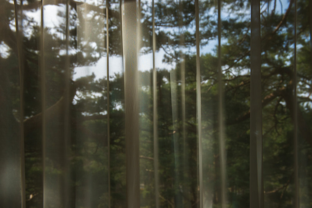 Soothing picture of see through curtains in front of trees