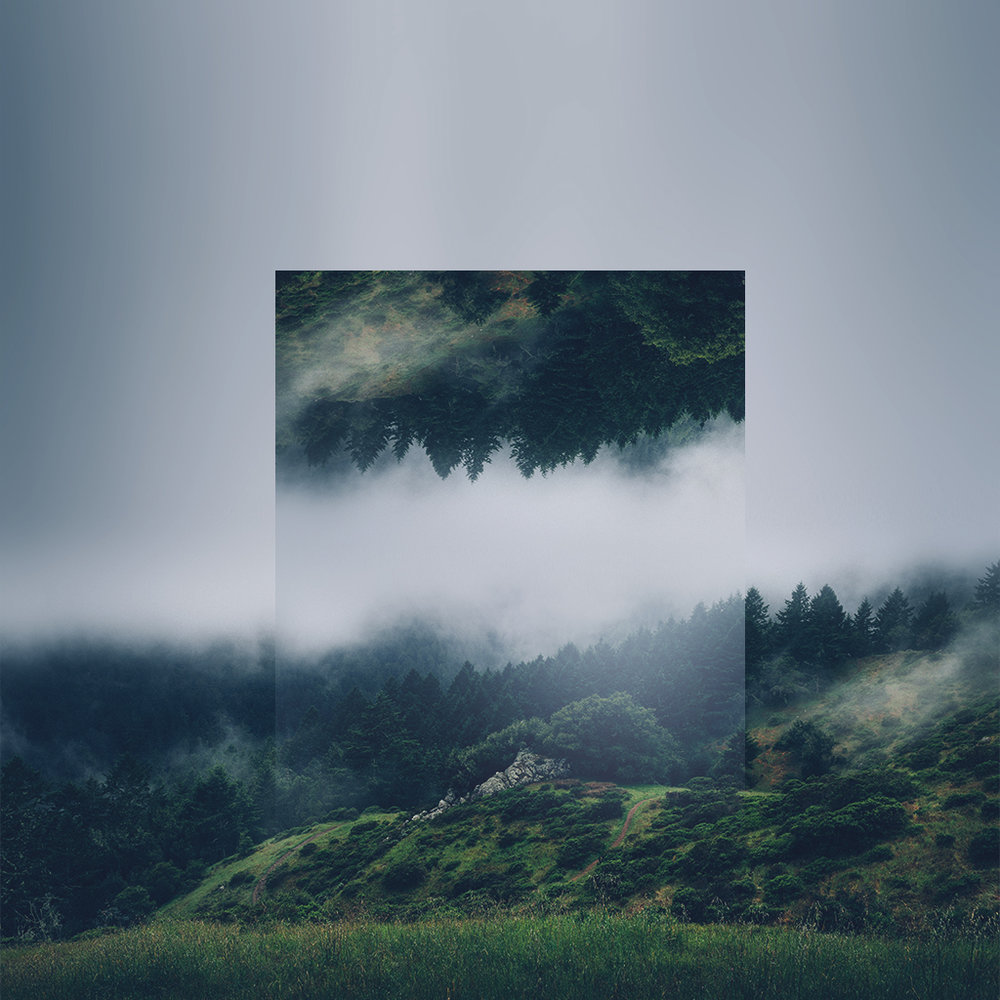 Geometric reflection of nature by victoria siemer