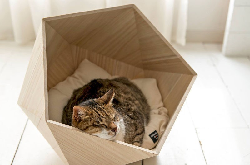Geometric pet beds made from Paulownia wood offer a less hidden, more open solution for the animal. Designed by  Junho .