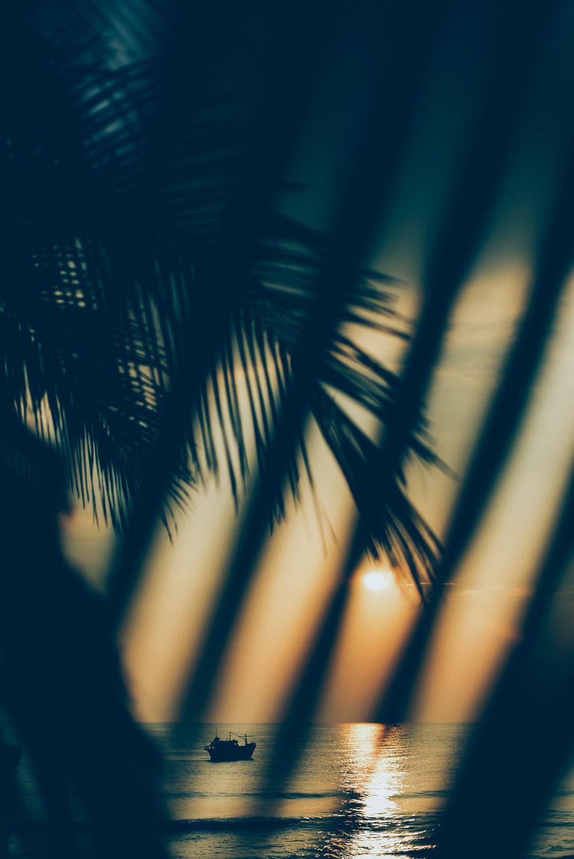 vietnam_04.jpg