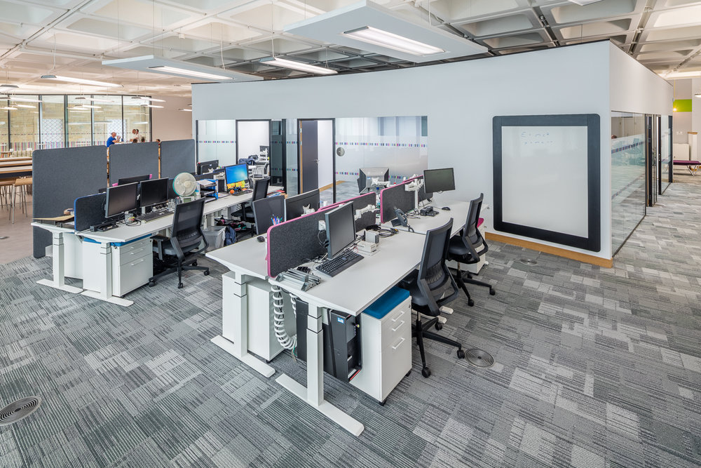 office design and fit out with sit stand desks.jpg