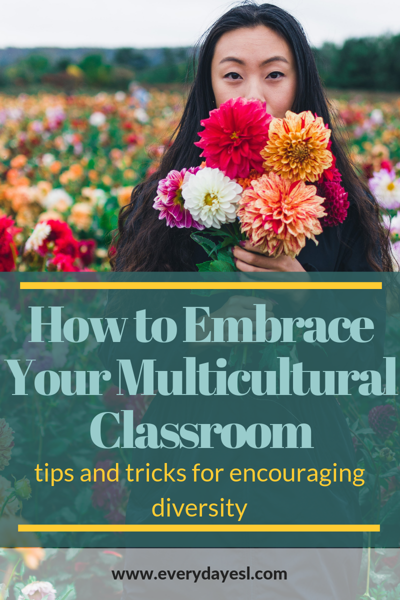 Encouraging Diversity in Multicultural Classrooms | Everyday ESL | Diversity in the Classroom | Adult ESL | Teaching English | Multicultural Classroom