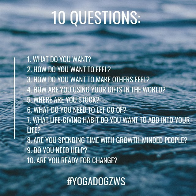 10 really great questions to ask yourself. How can you ask for help? How can you dig deep within to find the better you? Spending time with growth-minded people. Thinking about how you want to feel and how you want to make others feel. Yoga can help to think mindfully about how you can achieve and overcome. Practice movement. Practice mindfulness. Practice patience. Over time you will see things start to unfold, and you will notice yourself finding little glimpses of happiness and you will be proud of yourself. Let your yoga teachers guide you. Let yourself feel, stretch, heal, and sweat. Find your practice.  We love you all! . . . Xo- Yoga Dogz Comment if you need yoga today! 🤚🏻 See you on the mat, and happy almost Friday!! . Schedule in Stories! Next up, Warm Vinyasa with Stacey at 9 am! . #yogadogz #yogadogzws #mindfulness #intentions #yoga #winstonsalem #winstonsalemlocal #growthmindset #winstonsalemyoga  #yogaismyhappyplace #practicemakesbetter
