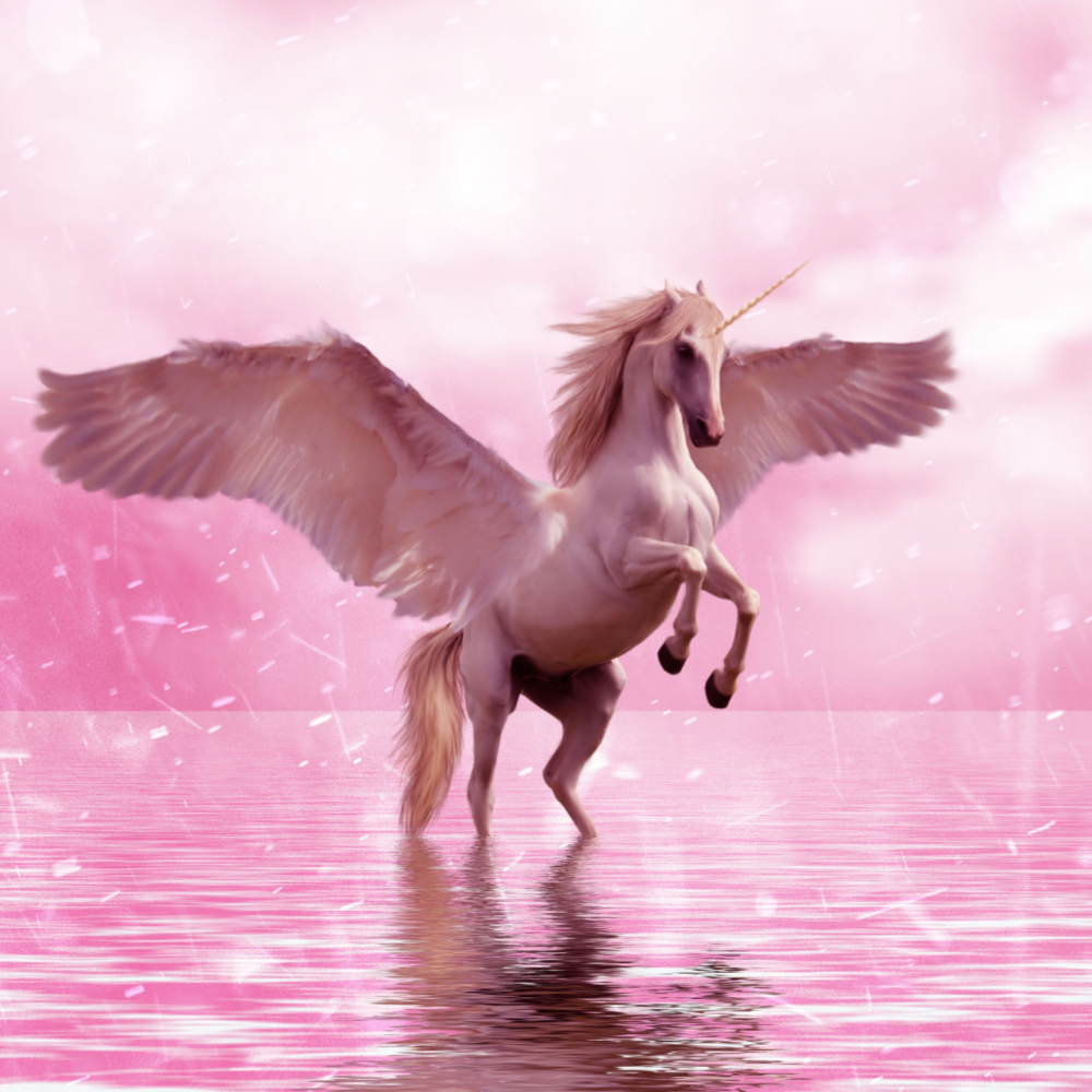 Be More Unicorn pink.png