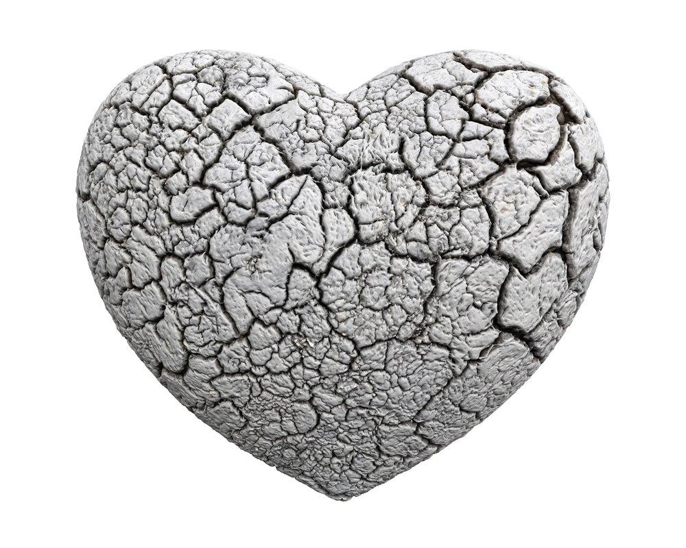 heart-1463424_1280.jpg