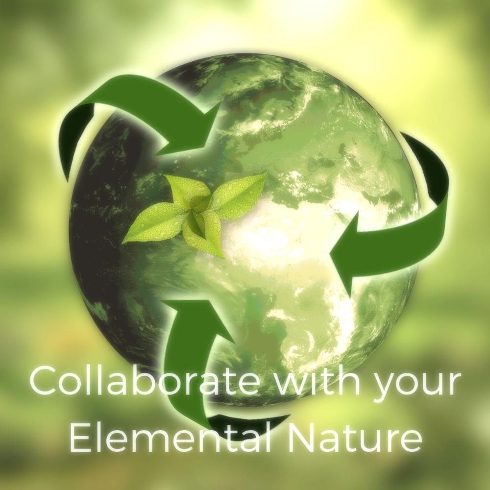 elementalNatureWorkshops.png