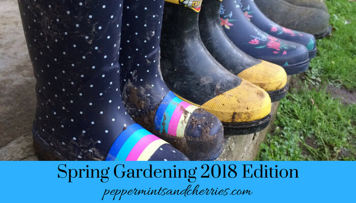 Spring Gardening 2018 with help from a toddler and a preschooler www.peppermintsandcherries.com
