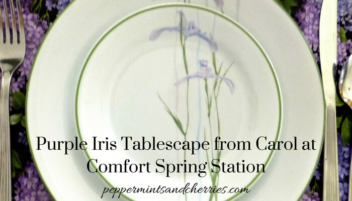 Guest Post at www.peppermintsandcherries.com from Comfort Spring Station
