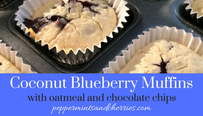 Coconut Blueberry Muffins with Oatmeal and Chocolate Chips Recipe