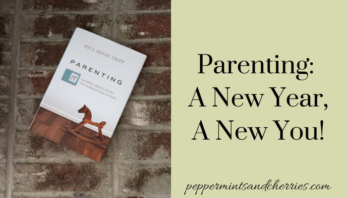Paul David Tripp, Book Review of Parenting - 14 Gospel Principles That Can Radically Change Your Family